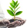 Aumentare o estendere un credito: consigli importanti per aumentare il vostro prestito