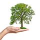 Unser Versprechen: 7 gute Gründe, Ihren Kredit bei der Mutuo AG aufzunehmen